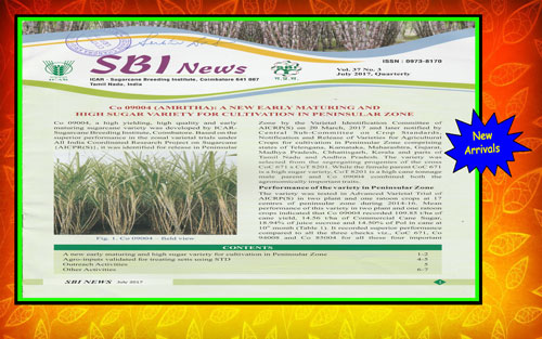 SBI News